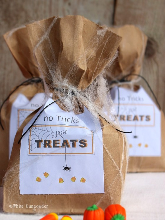 Halloween treats bags