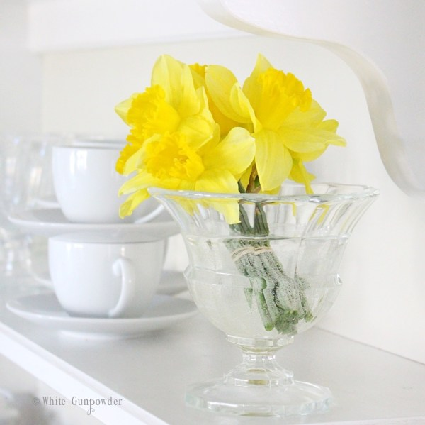Spring flowers - daffodils