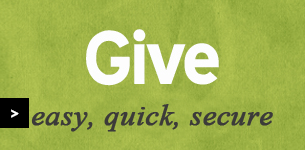 btn_give