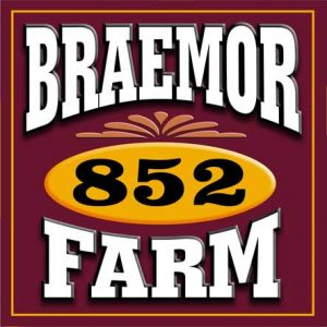 Braemor Sign