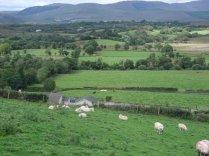 Distant views from White Heather Farmhouse, Kenmare