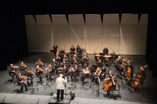 Whitehorse Community Orchestra 2015