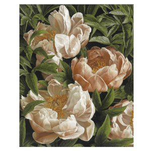 Coral Charm Peony - Mia Tarney - Limited Edition