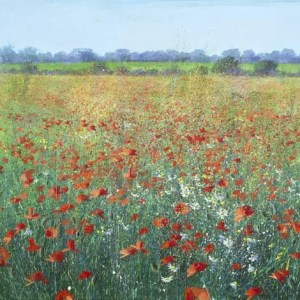 Poppies - Paul Evans - Limited Edition