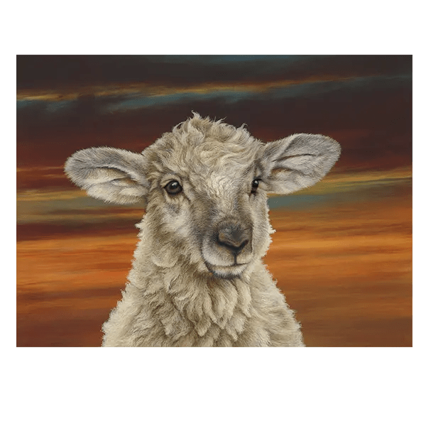 Shepherds Delight - Paul James - Limited Edition