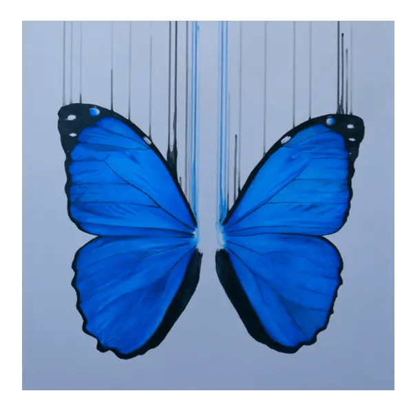 Morpho - Louise McNaught - Limited Edition
