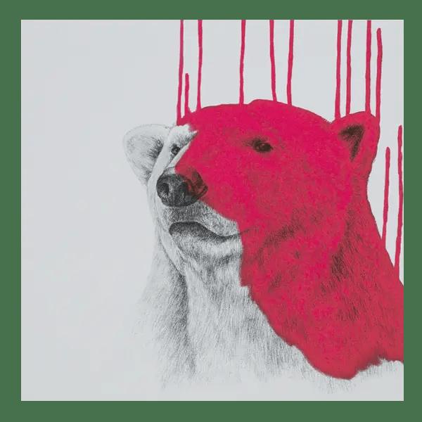 Polar Bear - Louise McNaught - Limited Edition