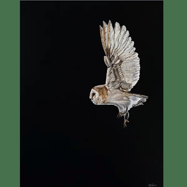 Night Flight - Natalie Toplass - Limited Edition