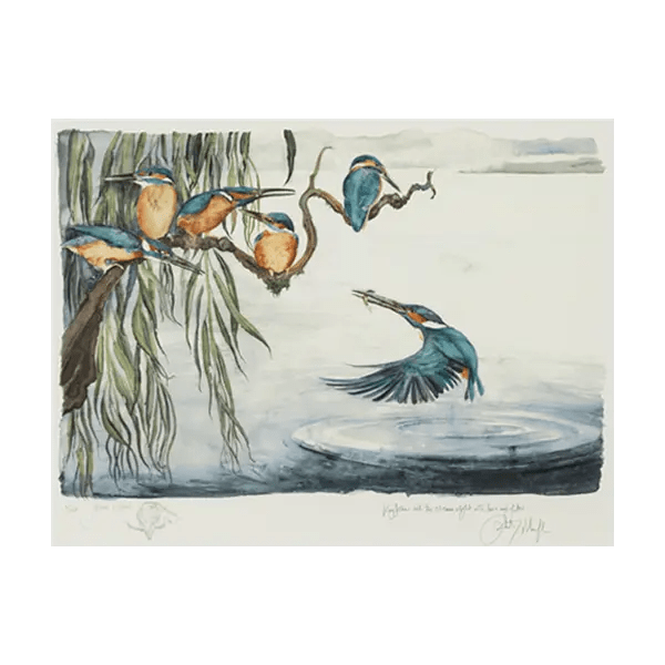 The Lost Words Kingfishers - Jackie Morris - Premium Limited Edition