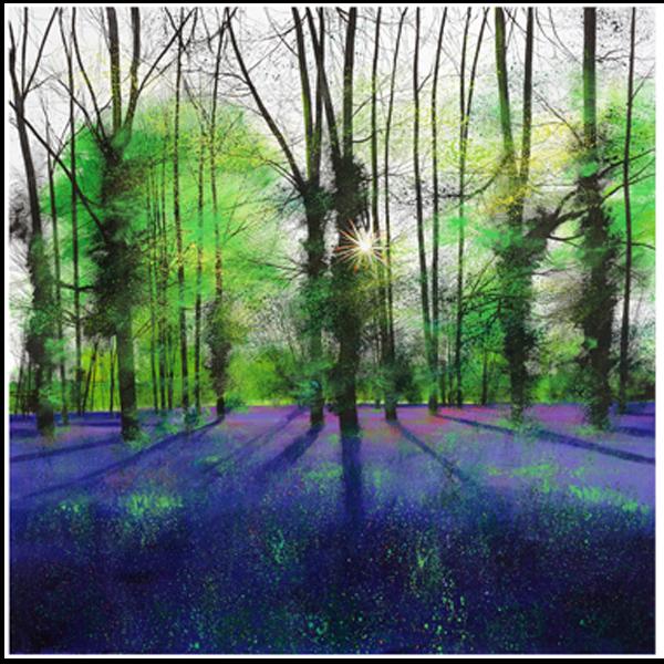 Sunburst and Bluebells - Paul Evans - Limited Edition
