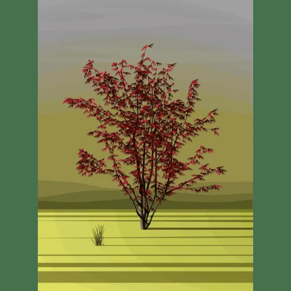 Sprint Acre - Dan Crisp - Limited Edition