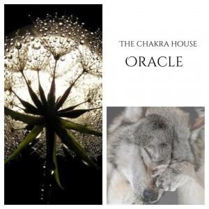 Full moon oracle