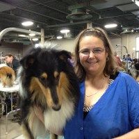 Dog Show at MSU Pavilion