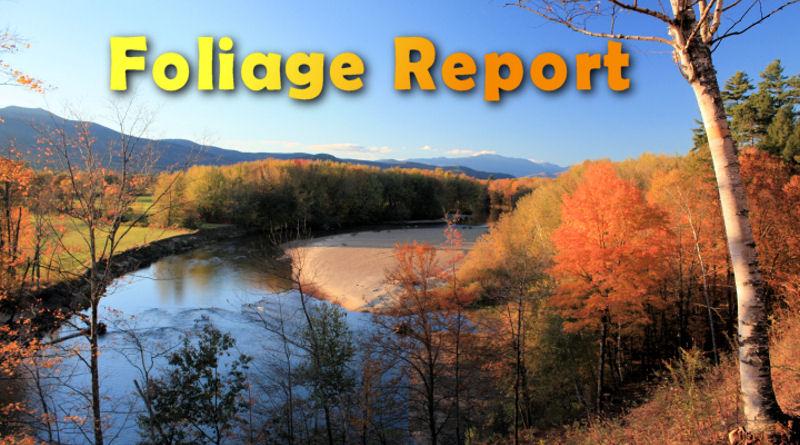 Foliage Report
