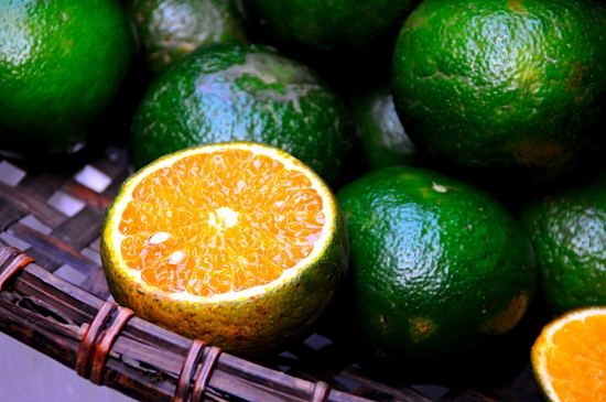 Vietnam Green Oranges