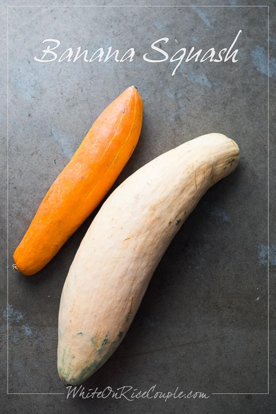 Winter Squash and Pumpkin Guide : Banana Squash   @whiteonrice