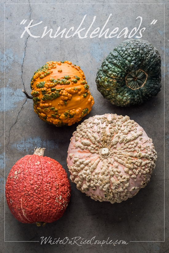 Ultimate Winter Squash and Pumpkin Guide from Todd & Diane   @whiteonrice