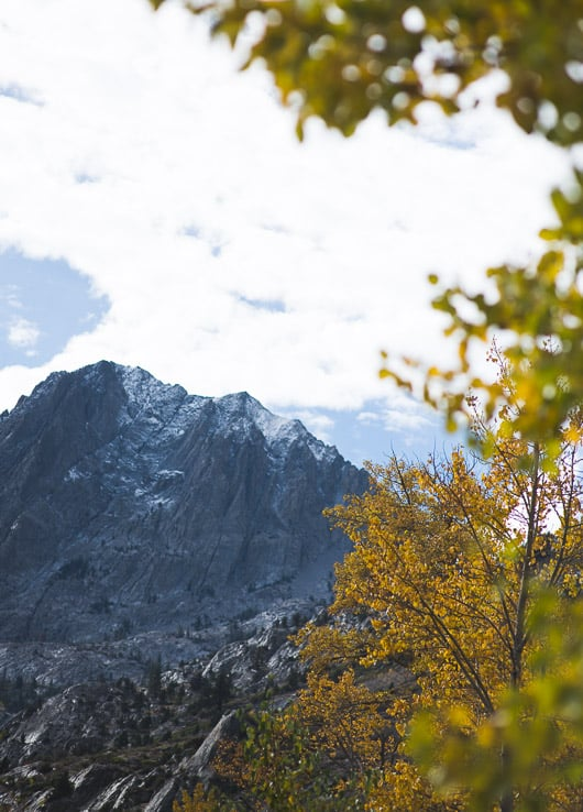 Fall colors in the Eastern Sierras, California: photography by @whiteonrice