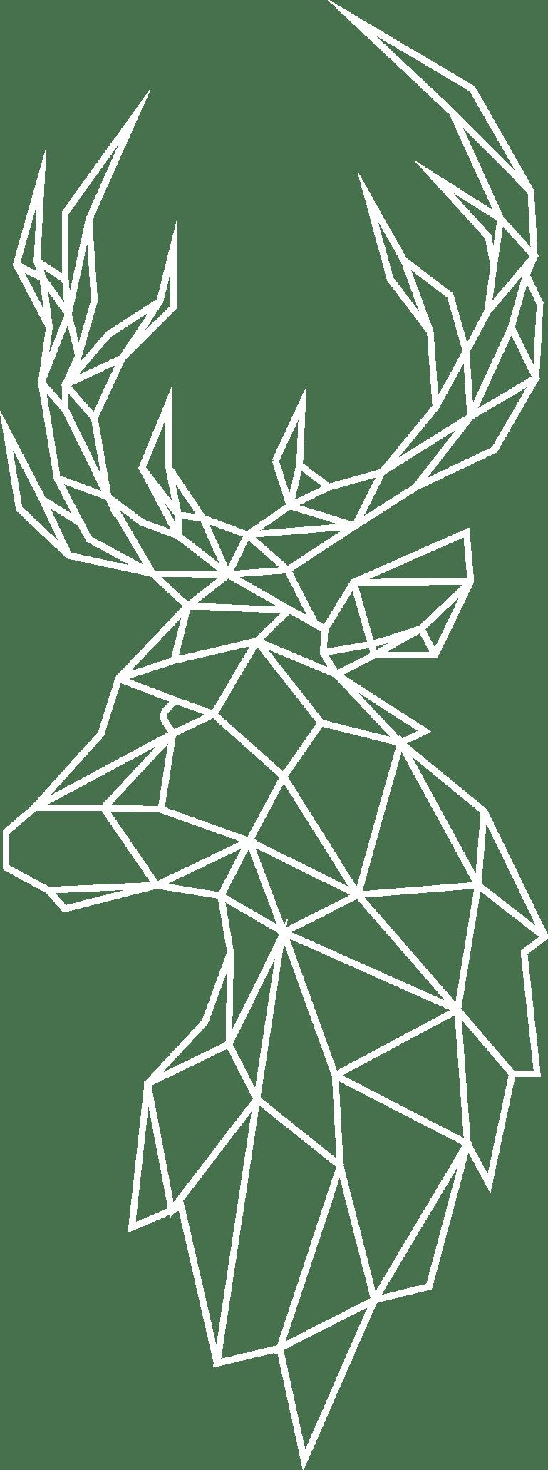 cerf_logo_white_paper_communication