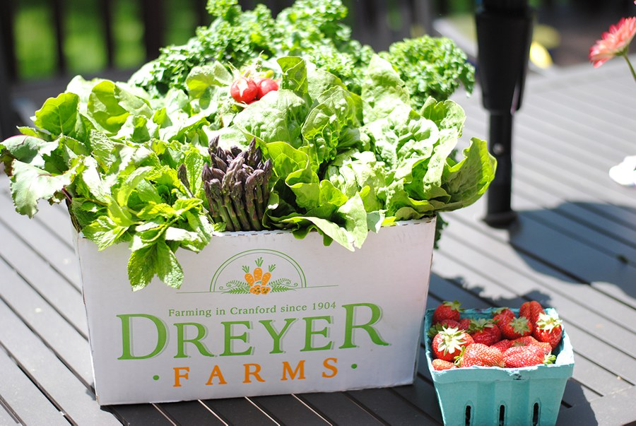 Dreyer farms CSA