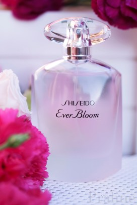 Ever Bloom