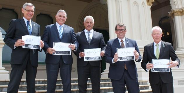 White Ribbon MP Ambassadors sign the pledge