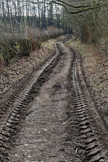 Muddy tracks near River Kent