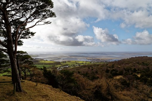 View from Arnside Knott Wood looking towards Far Arnside and across Morecambe Bay