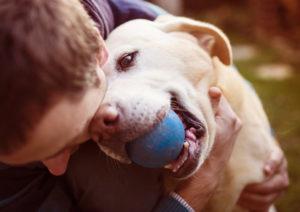 pet testimonial image