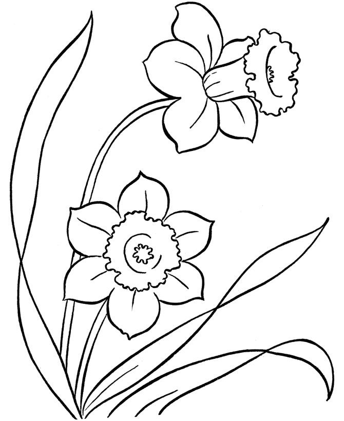 1200 spring flowers free clipart 7