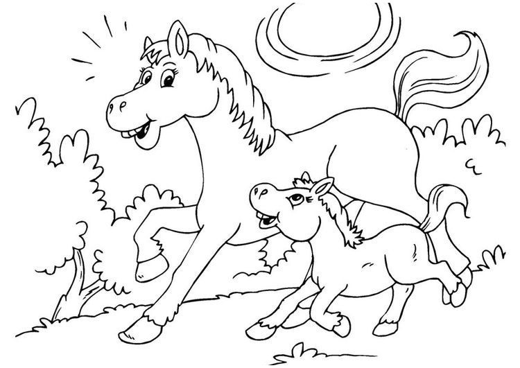 315 kostenlos malvorlagen pferde animal coloring pages horse