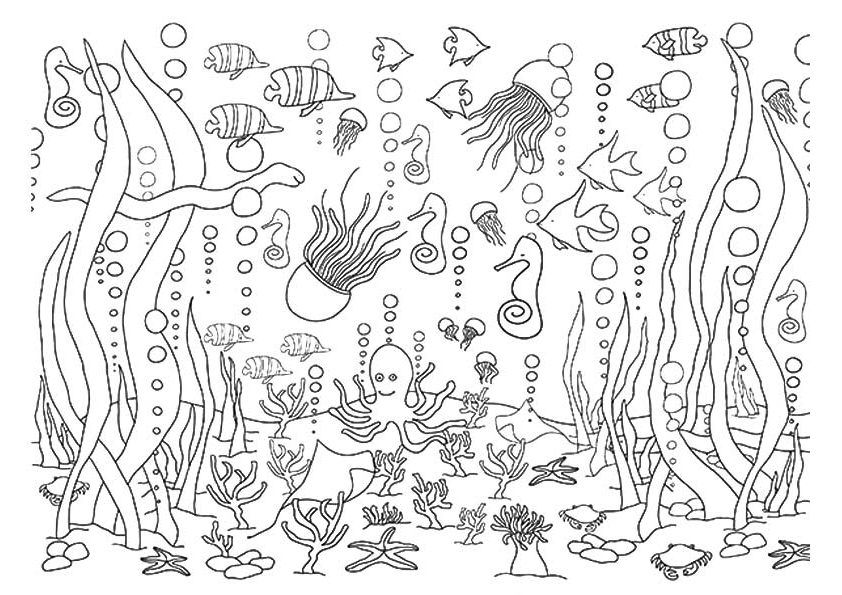 5 underwater coloring pages ocean coloring pages coloring
