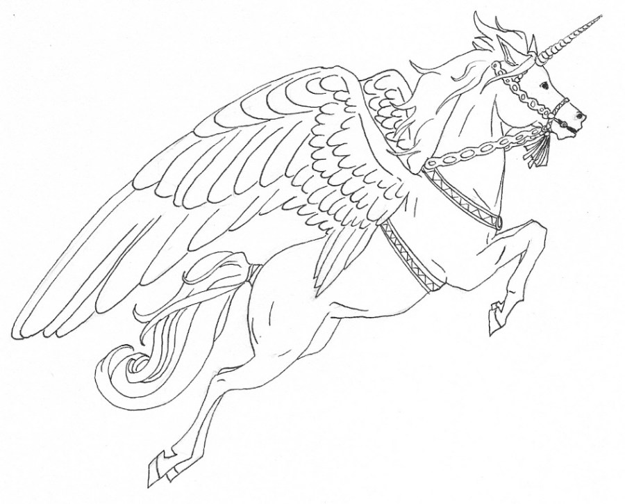 alicorn coloring pages at getdrawings free for