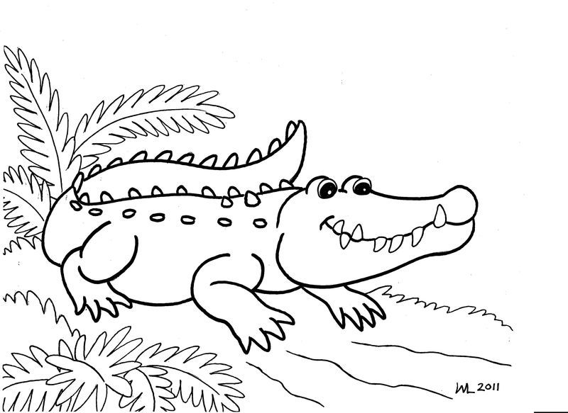 alligator coloring pages for kids image also see the