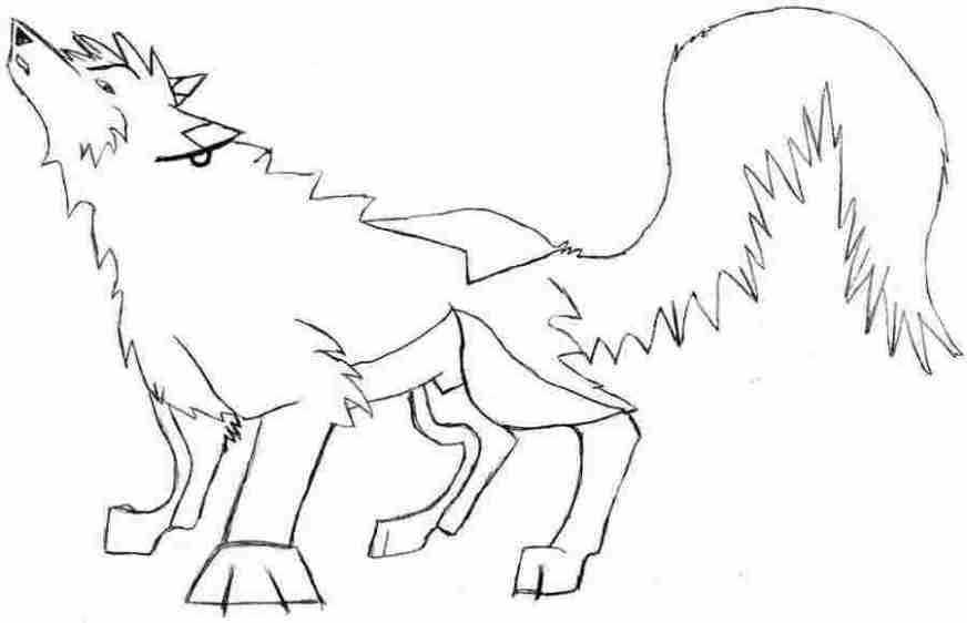 angry wolf coloring pages angry wolf coloring page