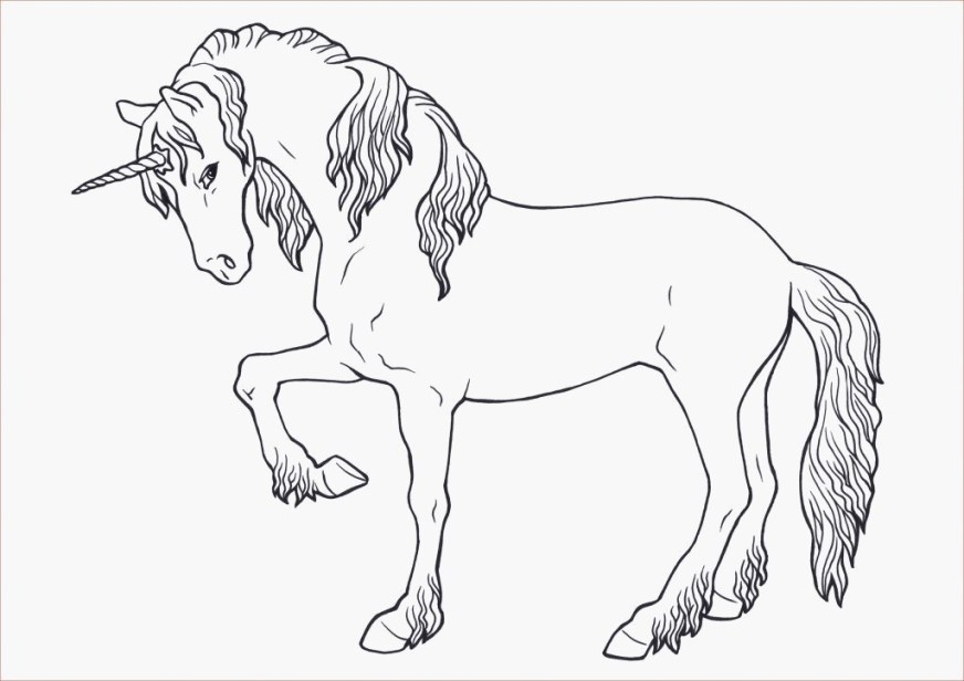 animal coloring pages horse coloring page coloring 5