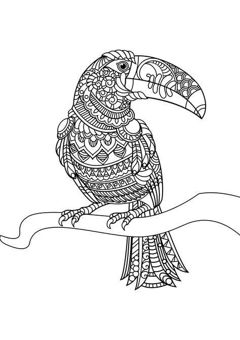 animal coloring pages pdf vogel malvorlagen malvorlagen