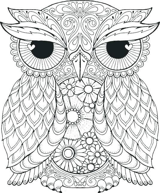 animal mandala coloring pages at getdrawings free for