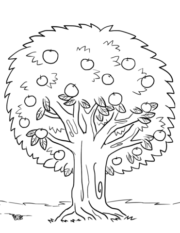 apple tree coloring page free printable coloring pages