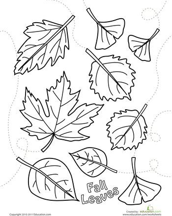 autumn leaves coloring page autumn coloring leaves