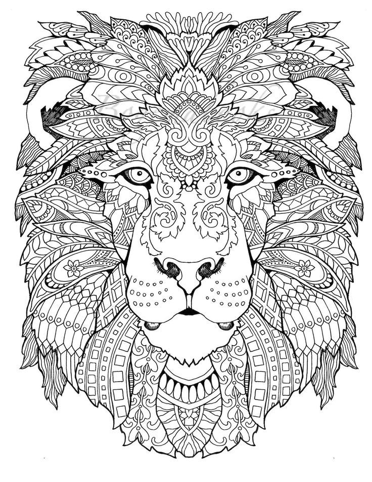awesome animals adult coloring book coloring pages pdf