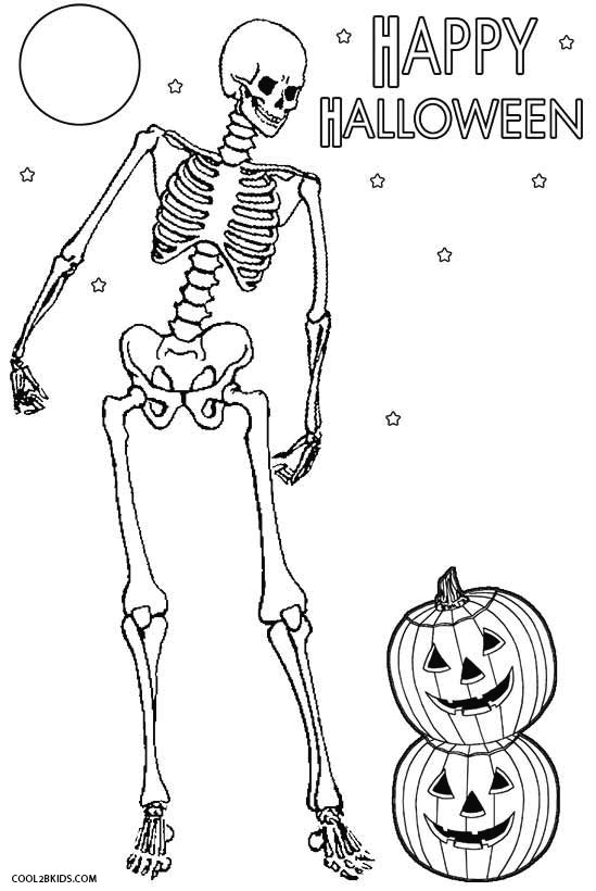 axial skeleton coloring pages