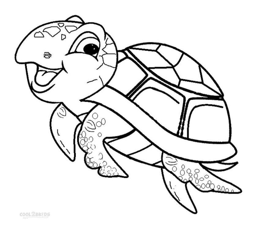 ba sea turtle coloring page google search turtle