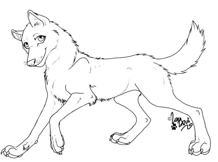ba wolf coloring pages at getdrawings free for