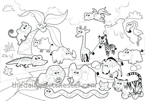 ba zoo animals coloring pages schuelertraining