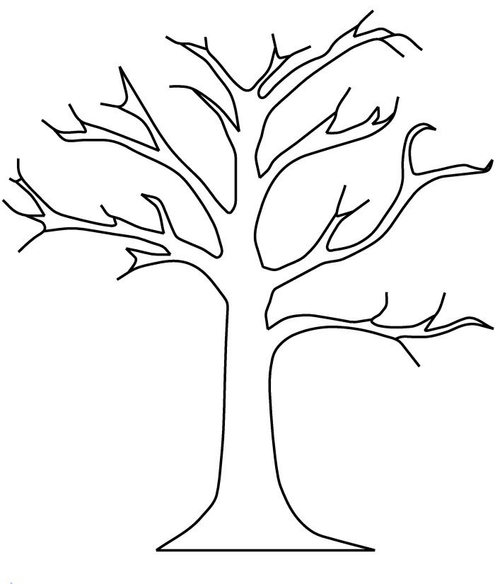 bare tree without leaves coloring pages tree coloring