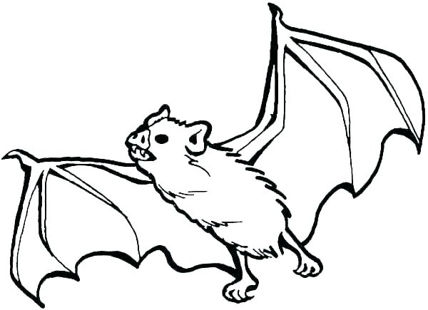 bat pictures to color coloring pages bat pat coloring pages