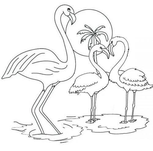 beautiful flamingo coloring pages fun for kids