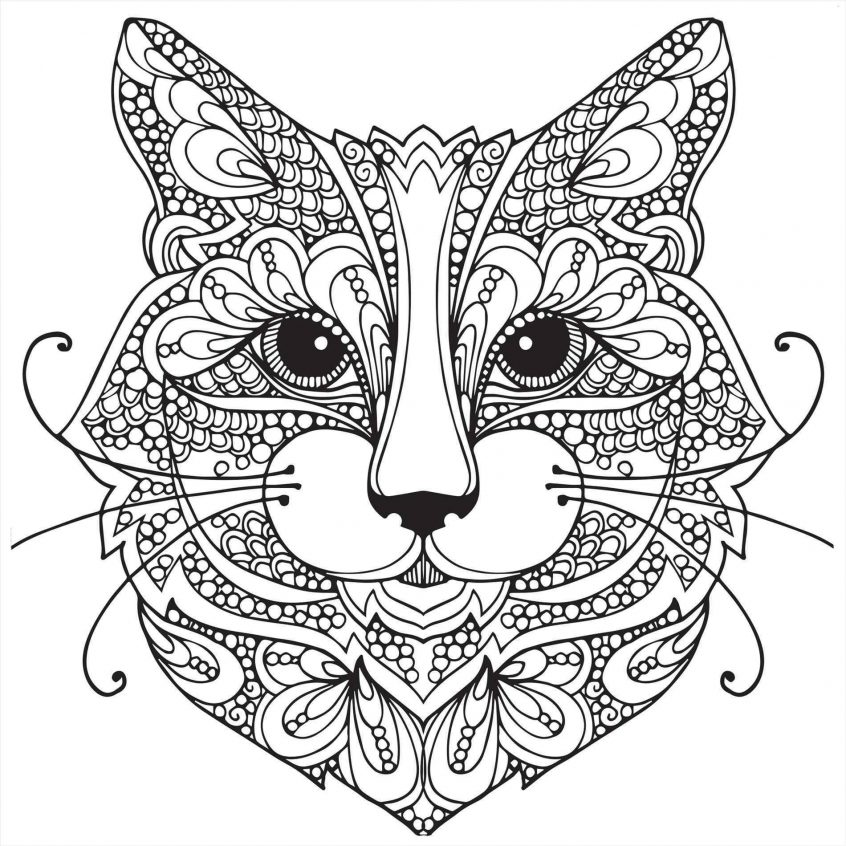 best coloring adult pages animal patterns colouring of