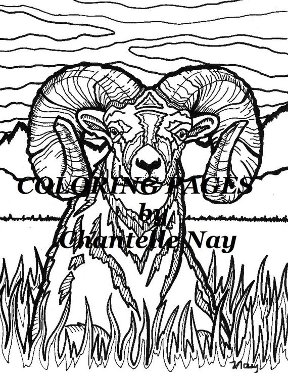 bighorn sheep coloring page adult coloring picture animals wildlife digital download zentangle printable coloring pages